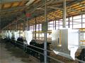 画像:養鶏・養豚業向け畜産機械のトップメーカー