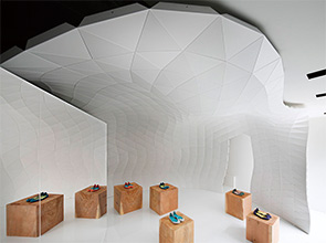 画像:「3D建築」 ― 3次元曲面による新しい建築空間づくりのかたちを提案